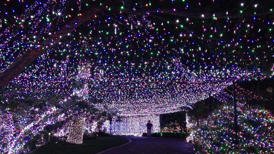 half a million led christmas light display breaks world record - Led Christmas Lighting
